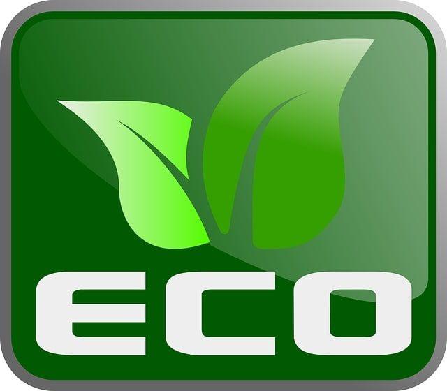 Ecologia Sulcis ambiente - Immagine rappresentativa.